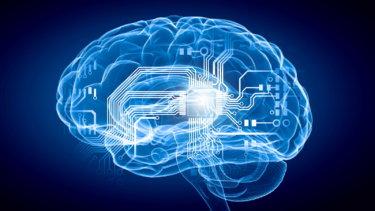 【脳疲労】脳疲れの症状と回復・改善の方法について【デフォルトモードネットワーク】