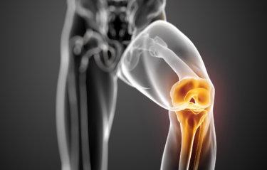 大腿脛骨関節の関節運動学
