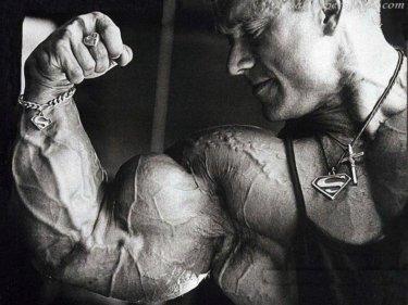 上腕二頭筋の解剖学(起始・停止・作用・神経支配)と関連症状