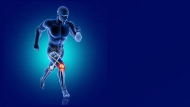 下肢関節のマルアライメントが前十字靭帯へ及ぼす影響について