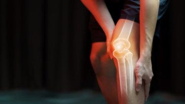 前十字靭帯の解剖学と運動学