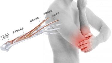 回外筋の解剖学と関連症状