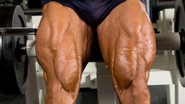 大腿四頭筋の解剖学と関連症状