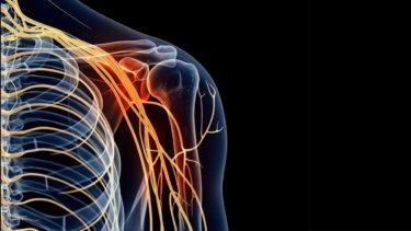 小胸筋の解剖学と関連症状