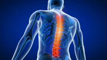 胸椎の関節運動学と関連症状
