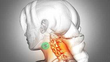 舌骨筋の解剖学と関連症状