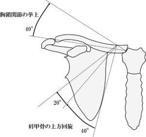 鎖骨と肩甲骨の運動