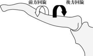 鎖骨の前方・後方回旋